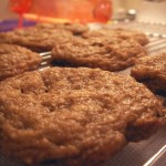 Spiced nut savory cookies (11)