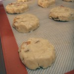 Apricot-nut cookies with almond icing (24)