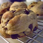 Huge chocochip cookies
